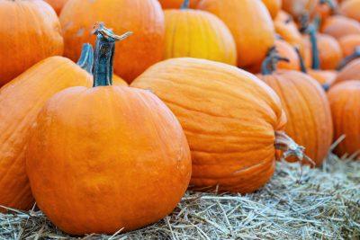 close up image of pumpkin